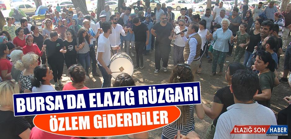 Bursa'da Elazığ Rüzgarı