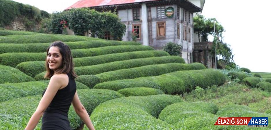 Sosyal medyada ünlenen çay bahçesi turistlerin akınına uğruyor
