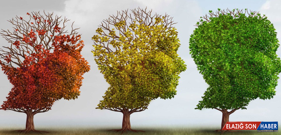 Alzheimer Hastalığından Koruyan Besinler Nelerdir?