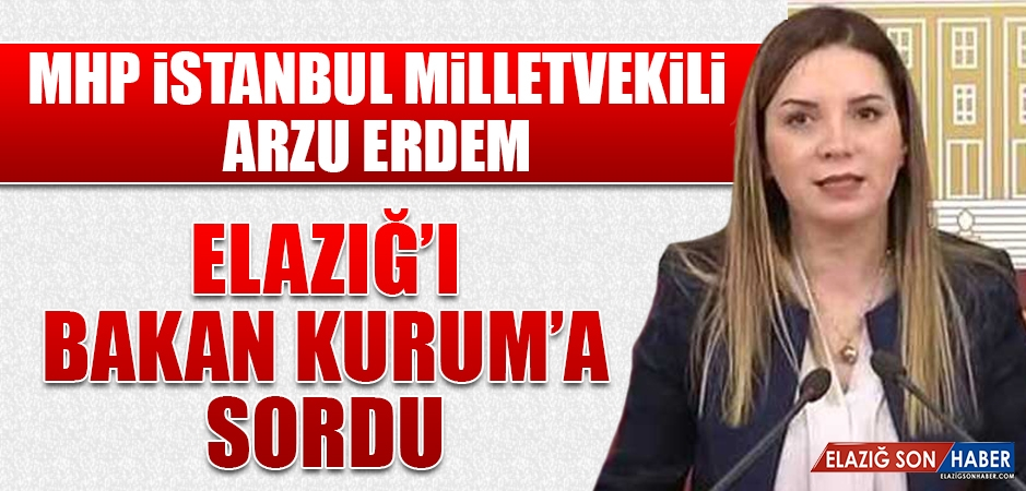 Milletvekili Erdem, Elazığ'ı Bakan Kurum'a Sordu