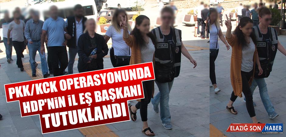 PKK/KCK Operasyonunda HDP'nin İl Eş Başkanı Tutuklandı