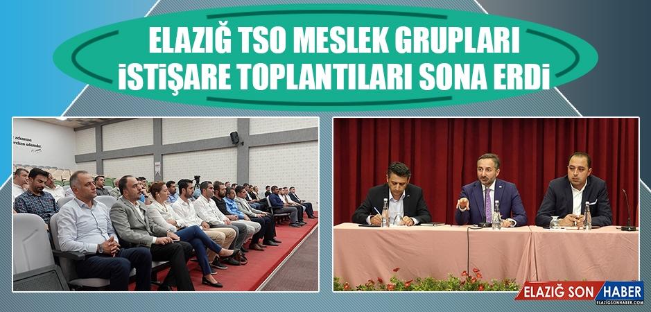 Elazığ TSO Meslek Grupları İstişare Toplantıları Sona Erdi