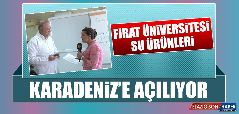 Fırat Üniversitesi Su Ürünleri Karadeniz'e Açılıyor