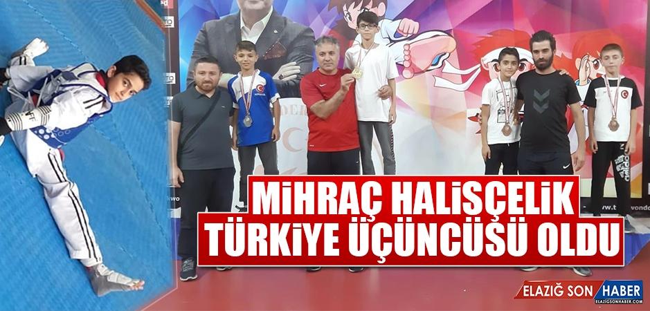 Mihraç Halisçelik, Türkiye Üçüncüsü Oldu