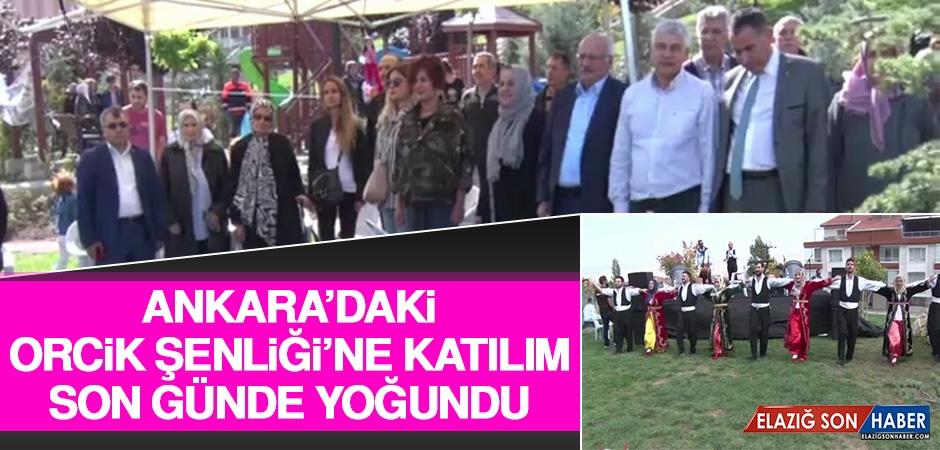 Ankara'daki Orcik Şenliği'ne Katılım Son Günde Yoğundu