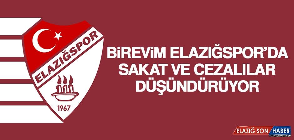 Birevim Elazığspor'da Sakat ve Cezalılar Düşündürüyor