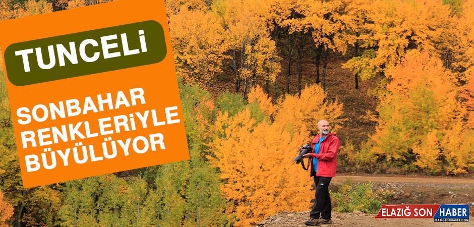 Sonbahar Renkleriyle Büyüleyen Tunceli'ye Fotoğrafçı İlgisi