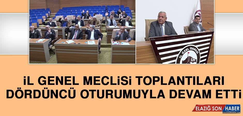 İl Genel Meclisi Toplantıları 4'üncü Oturumuyla Devam Etti