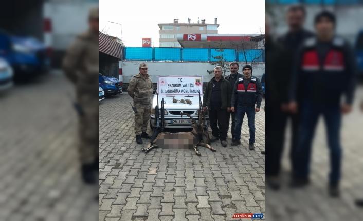 Erzurum'da kaçak avcılara, 29 bin 365 lira ceza kesildi