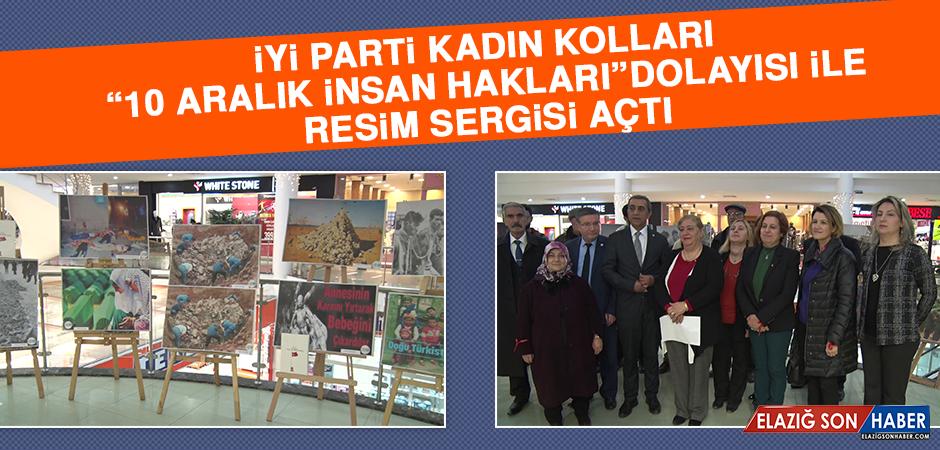 """İYİ Parti Kadın Kolları, """"10 Aralık İnsan Hakları"""" Dolayısı İle Resim Sergisi Açtı"""