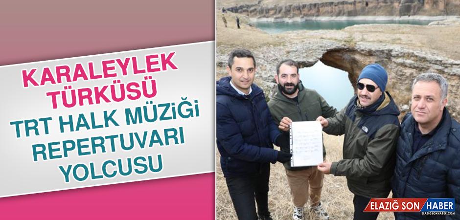 Karaleylek Türküsü TRT Halk Müziği Repertuvarı Yolcusu
