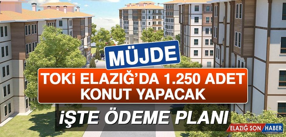 TOKİ Elazığ'da 1.250 Adet Konut Yapacak