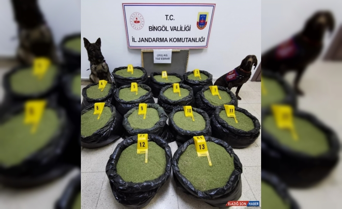 Bingöl'de 202 kilogram esrar ele geçirildi