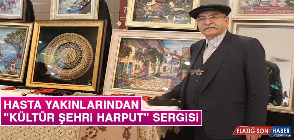 """Hasta Yakınlarından """"Kültür Şehri Harput"""" Sergisi"""