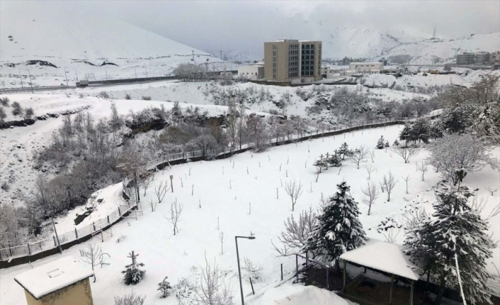 Bitlis'te kar etkili oldu