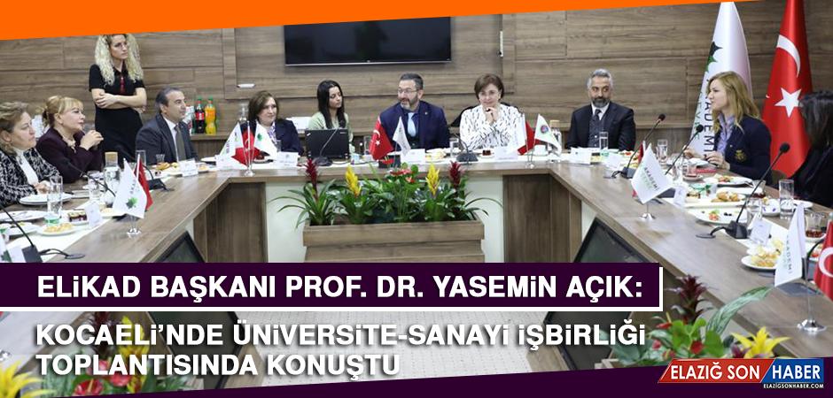 Prof. Dr. Açık, Kocaeli'nde Üniversite-Sanayi İşbirliği Toplantısında Konuştu