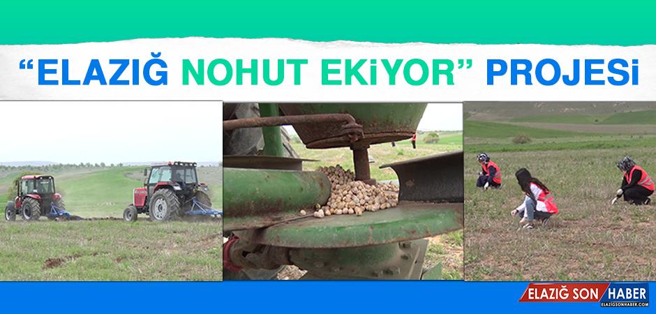 """""""Elazığ Nohut Ekiyor"""" Projesi"""
