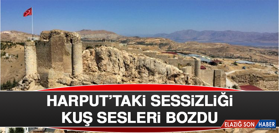 HARPUT'TAKİ SESSİZLİĞİ KUŞ SESLERİ BOZDU