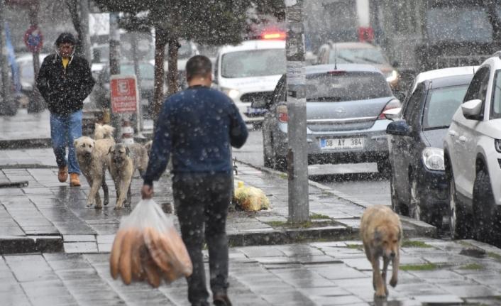 Kars'ta kar yaşamı etkiledi