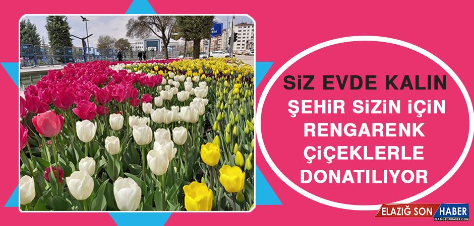 Siz Evde Kalın, Şehir Sizin İçin Rengarenk Çiçeklerle Donatılıyor