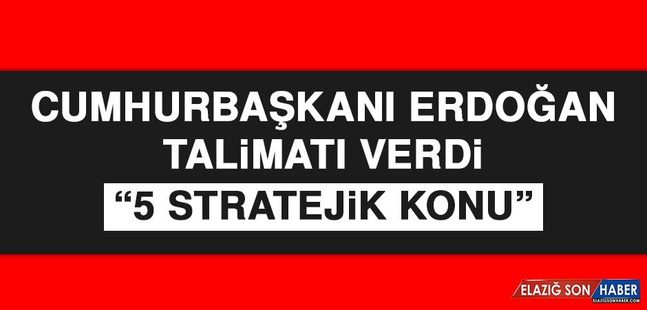 Cumhurbaşkanı Erdoğan Talimatı Verdi: 5 Stratejik Konu