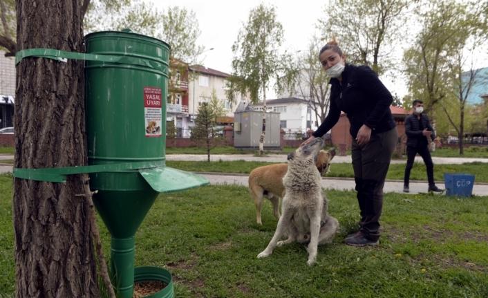 Doğa koruma görevlileri sokak hayvanlarını bayramda da unutmadı