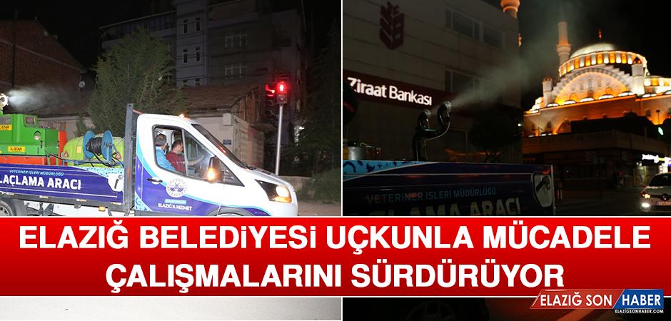 Elazığ Belediyesi Uçkunla Mücadele Çalışmalarını Sürdürüyor