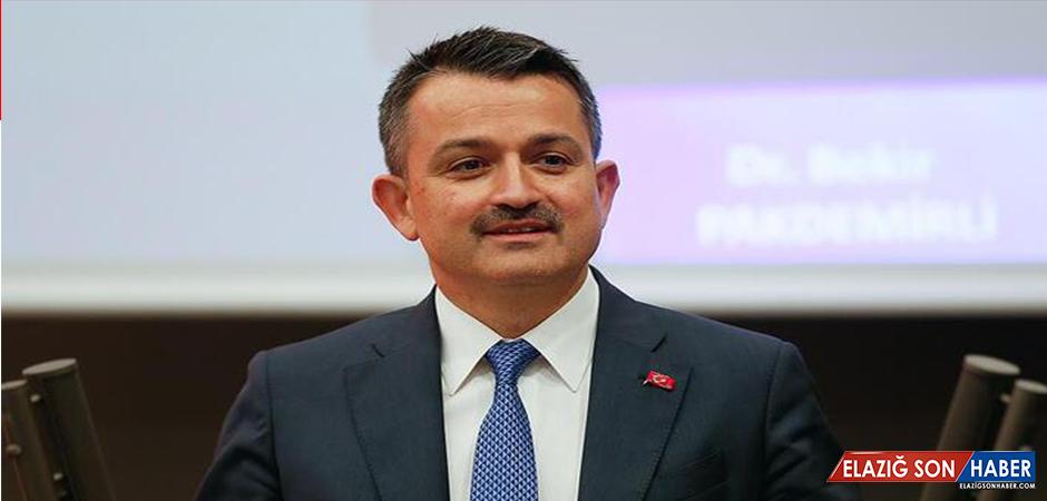 Pakdemirli duyurdu! Türkiye'nin en büyüğü açılıyor