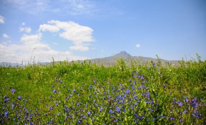 Tekelti Dağı'nda bahar, kartpostallık manzaralar oluşturdu