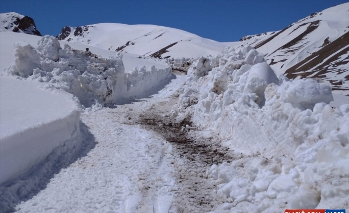 Van'da mayıs ayında karla mücadele