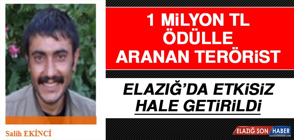 1 Milyon TL Ödülle Aranan Terörist Elazığ'da Etkisiz Hale Getirildi