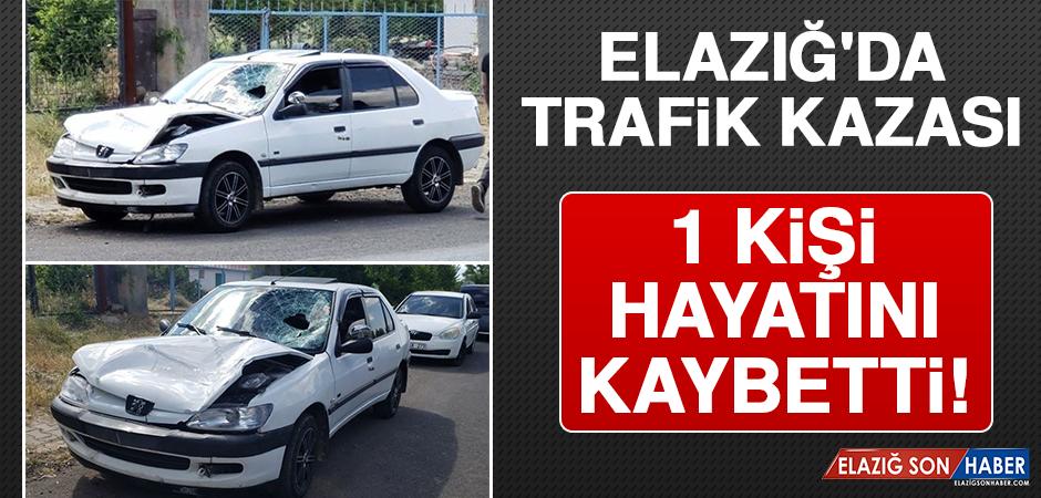 Elazığ'da Trafik Kazası: 1 Kişi Hayatını Kaybetti!