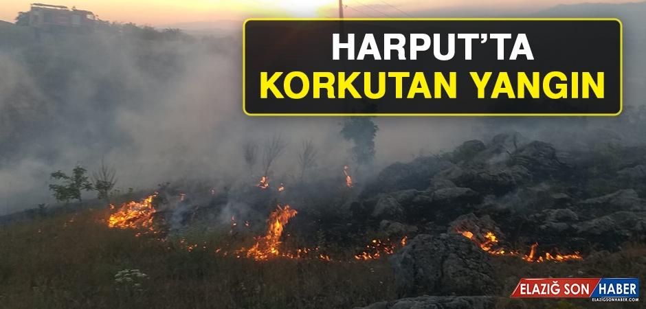 Harput'ta Korkutan Yangın