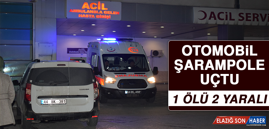 Komşu Şehirde Otomobil Şarampole Uçtu, 1 Ölü 2 Yaralı