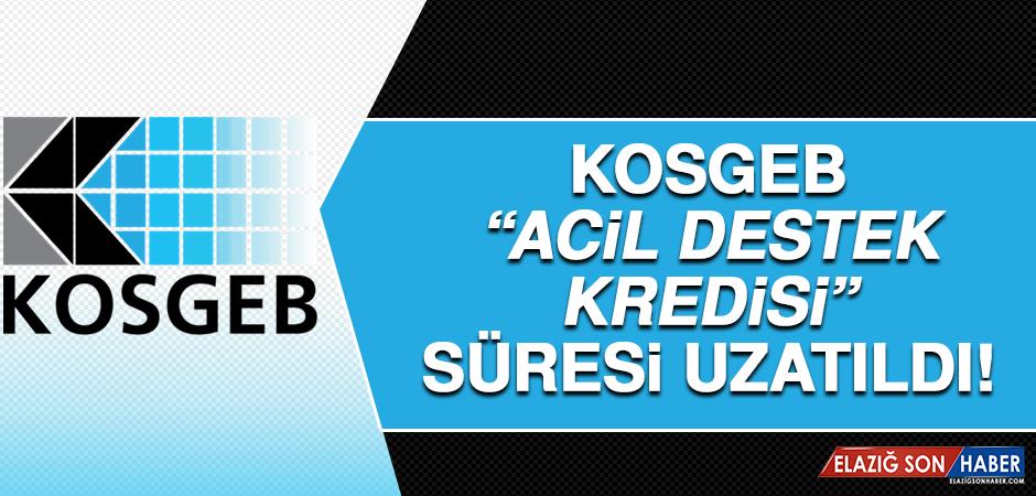 """KOSGEB """"Acil Destek Kredisi"""" Süresi 30 Ekime Uzatıldı"""