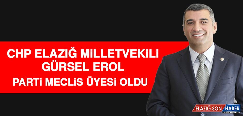 Milletvekili Erol, CHP Parti Meclisi Üyeliğine Seçildi