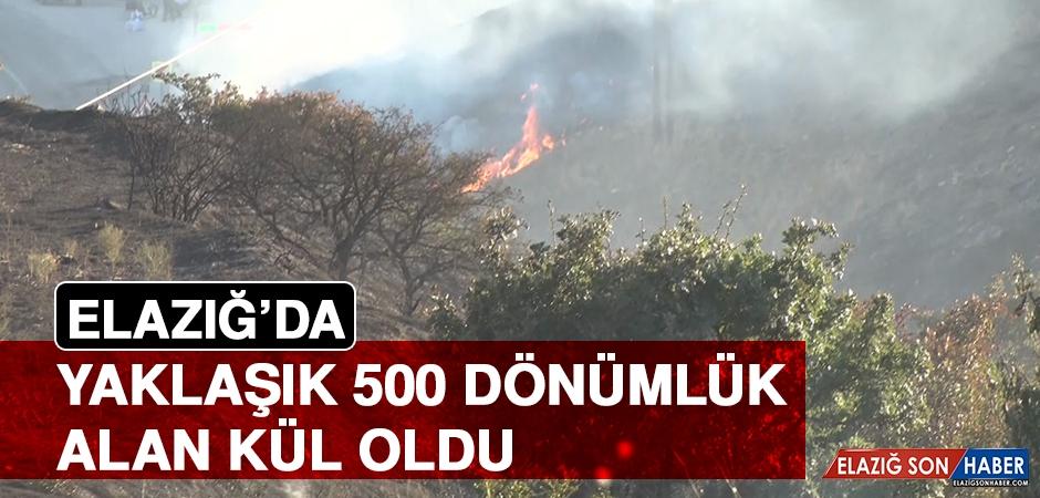 Elazığ'da Yaklaşık 500 Dönümlük Alan Kül Oldu!