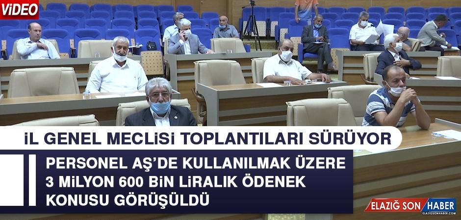 Elazığ İl Genel Meclisi Toplantıları Sürüyor