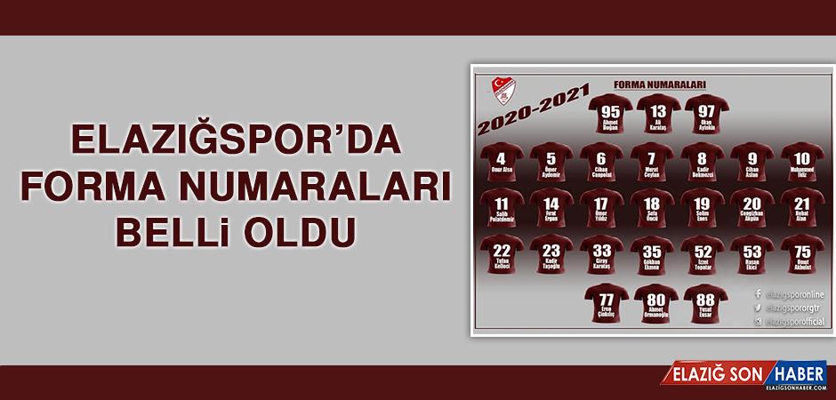 Elazığspor'da Forma Numaraları Belli Oldu