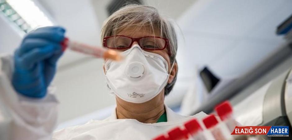 Kovid-19 Aşısının Kasım-Aralık'ta Çıkması Öngörülüyor