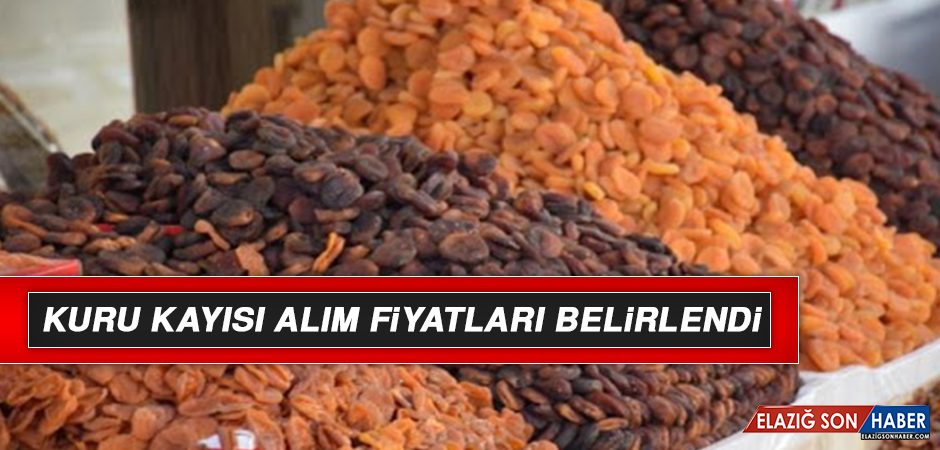 KURU KAYISI ALIM FİYATLARI BELİRLENDİ