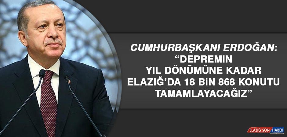 """Cumhurbaşkanı Erdoğan: """"Elazığ'da 18 bin 868 konutu tamamlayacağız"""""""