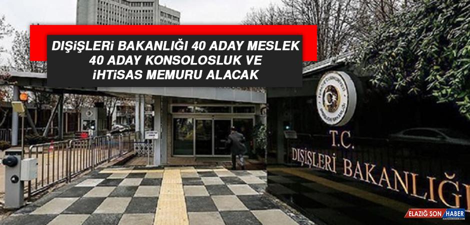 Dışişleri Bakanlığı 40 Aday Meslek, 40 Aday Konsolosluk ve ihtisas Memuru Alacak