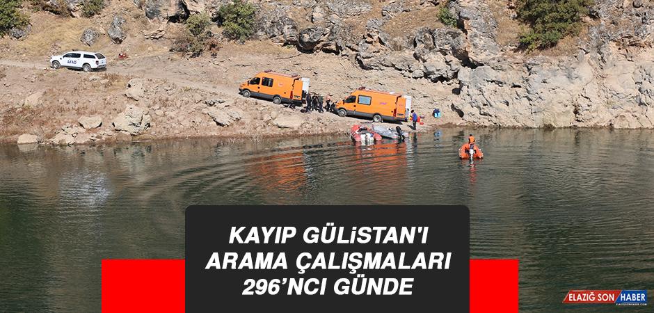 Kayıp Gülistan'ı Arama Çalışmaları 296'ncı Günde