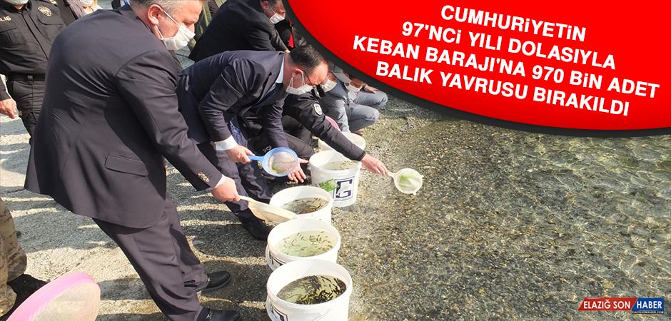 Keban Barajı'na 970 Bin Adet Balık Yavrusu Bırakıldı