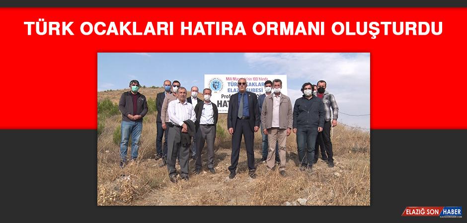 Türk Ocakları Hatıra Ormanı Oluşturdu