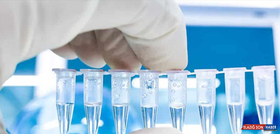 Bakanlıktan 'PCR' Testi İçin Fazla Ücret Alan Kuruluşlara Yaptırım