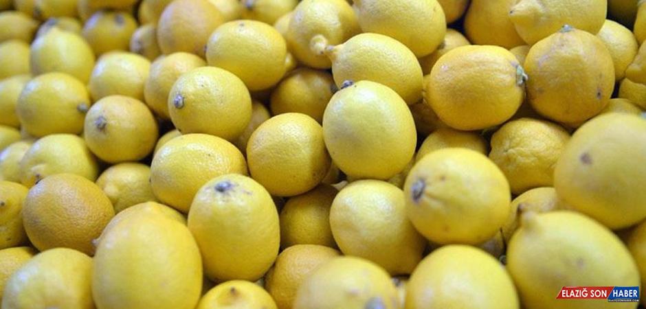 Ekimde En Fazla Erkek Kazağının Fiyatı Arttı, Limonunki Düştü