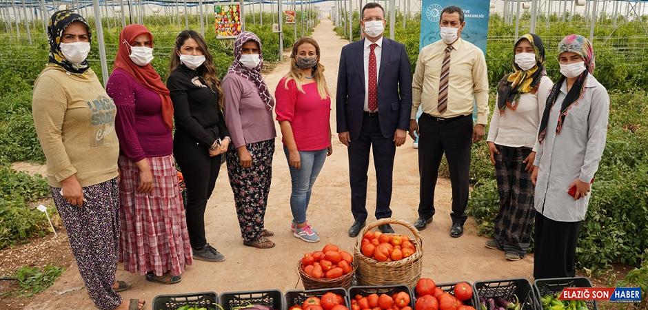 Gaziantep'te Adını EZO Gelin'den Alan Girişim Giderek Büyüyor