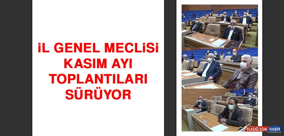 İl Genel Meclisi Kasım Ayı Toplantıları Sürüyor